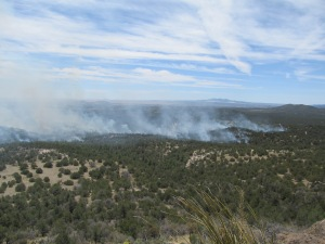 Smoke from a prescribed fire east of Silver City on the Gila National Forest