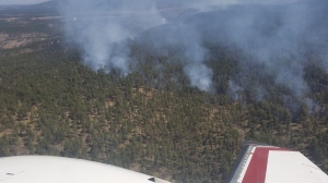 Fire spreading at low to moderate rate in Johnson Canyon in the Gila Wilderness