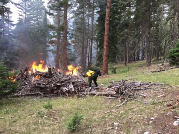 Pile Burning on Cox Canyon Rx Project