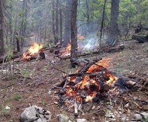 piles of slash burning