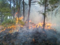 Favorable burning conditions on West Mountain.