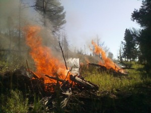 Ski Run Rd Rx Project - pile burning