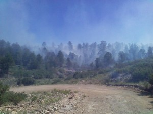 Light Smoke on Coe Prescribed Fire Project