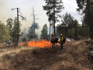 Prescribed fire Ignition operations