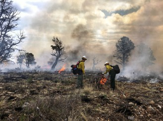 Two firefighters support work on the prescribed burn on the Lincoln National Forest